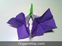 Origami Flower Instructions And Diagram