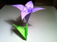 Origami Iris Instructions And Diagram