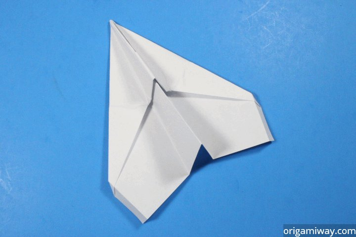 Professional Paper Airplane