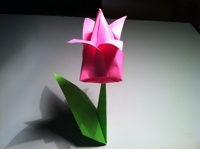 Origami Tulip Instructions And Diagram